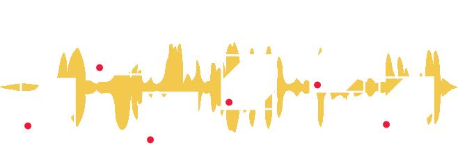 audio interview